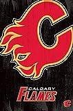 Calgary Flames - Logo 2013 Poster Drucken (55,88 x 86,36
