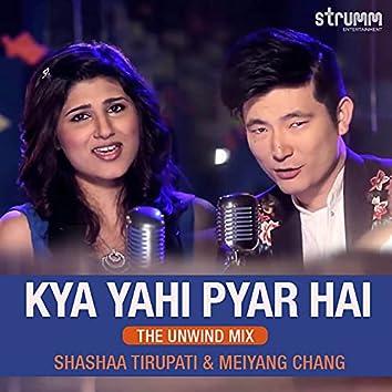 Kya Yahi Pyar Hai (The Unwind Mix)