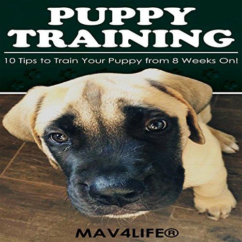 Puppy Training audiobook cover art