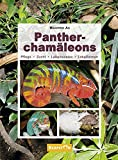 Pantherchamäleons: Pflege, Zucht, Lebensweise, Lokalformen