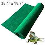 Reptile Carpet And Liners