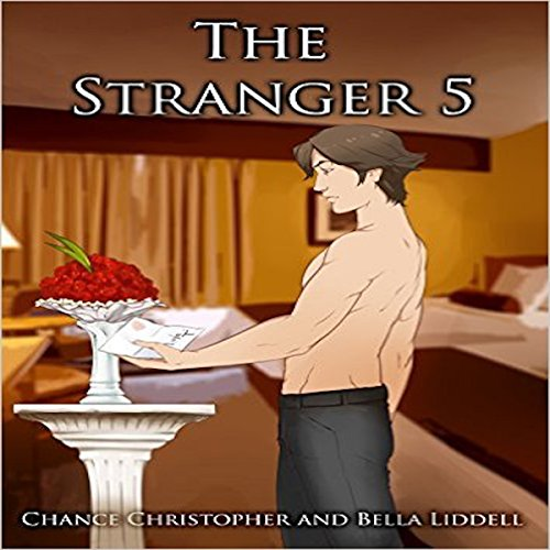 The Stranger 5 audiobook cover art