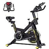 BINHIA Exercise Bike Indoor Cycling Bike Stationary - Cycle Bike with Ipad Mount &Comfortable Seat Cushion (Gray & Black)