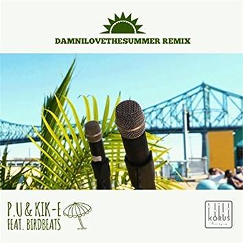Damnilovethesummer (Remix) [feat. Birdbeats]