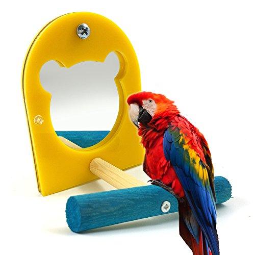 Bird Miroir jouet pour perroquet perruche perruche Amazones cacatoès Finch inséparables Gris du Gabon Ara Amazon cacatoès Cage perchoirs Paw meulage Bois debout Barre de