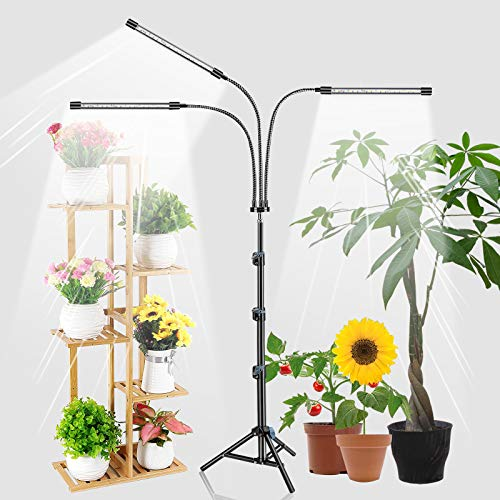 Grow Lights for Indoor Plants, 60 LED 5500K Plant Growing Lamp with Stand Adjustable 15-47 Inch, 3 Head Floor Standing Plant Lights with 4/8/12H Timer for Seedling, Succulents, Green