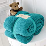 RayyanLinen Teddy Fleece Throw Blanket Warm Soft Cuddly Sofa Bedspread Travel Throw (Teal, Double - 150 X...
