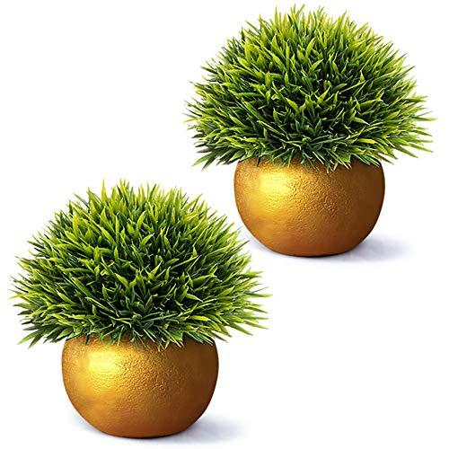 Vangold Künstliche Pflanzen Kunstpflanze Kleine Gefälschte Pflanzen mit Töpfe für Zuhause/Büro Innen Decor (Gold)