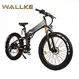 W WALLKE X3 Por 26-inch Fat Tire Electric Bicycle...