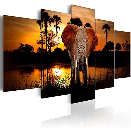 murando - Cuadro en Lienzo 200x100 cm Impresión de 5 Piezas Material Tejido no Tejido Impresión Artística Imagen Gráfica Decoracion de Pared Paisaje frica Animal Elefante g-C-0024-b-m