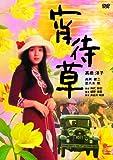 宵待草[DVD]