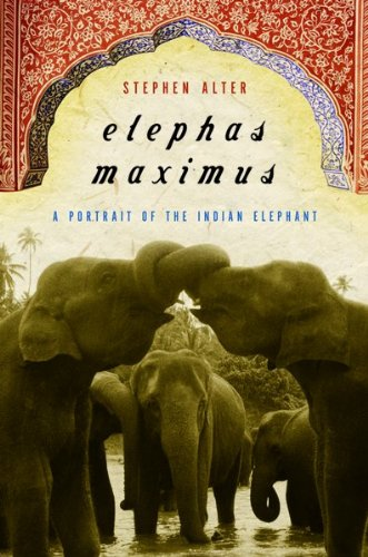 Price comparison product image Elephas Maximus: A Portrait of the Indian Elephant