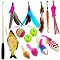 Verfease 14 Pack Interactive Cat Toys for Indoor Cats, Kitten Toys Set with Retractable Feather Teaser Wand, Catnip Toy Mouse Balls for Kittens Playing