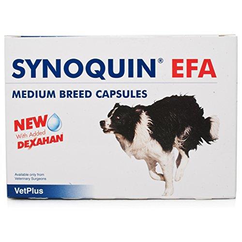 Laboratoires Vetplus Synoquin EFA Races Moyennes, 120 gélules