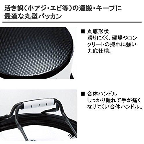 ダイワ(Daiwa)活かしバッカンR33CM(H)ホワイト