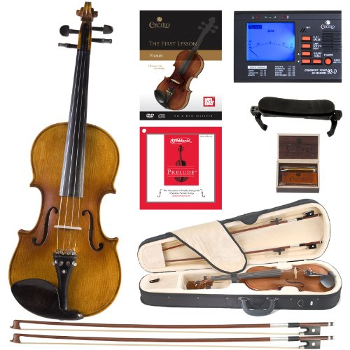 Cecilio CVN-500 Solidwood Ebony Fitted Violin with D