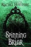 Spinning Briar: A time travel, fairy tale retelling (The Mirror Chronicles Book 2)