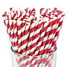 Just Artifacts Premium Biodegradable Disposable Drinking Striped Paper Straws (100pcs, Red)