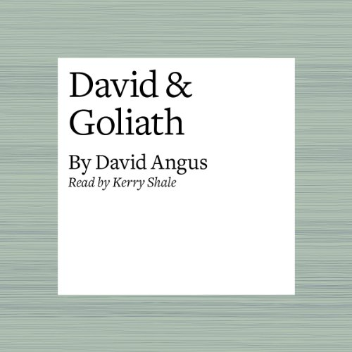 David & Goliath audiobook cover art