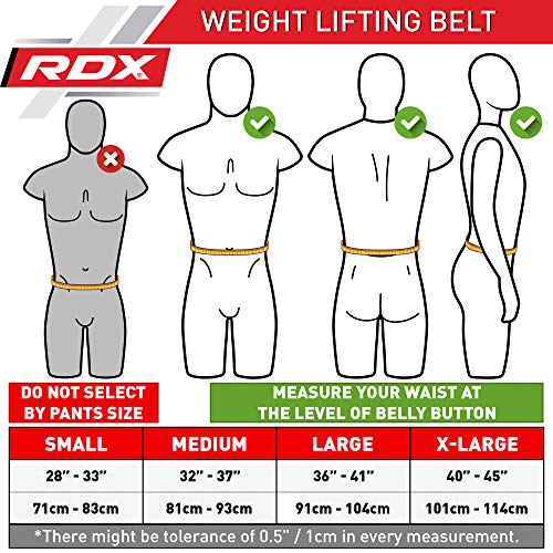 Authentische RDX Gewichthebergürtel Body Building Gym Fitness - 2