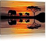 Afrika Elefant in Sonnenschein schwarz/weiß Format: 80x60