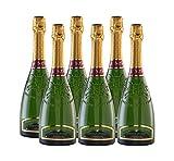 Domaine du Cassard - Crémant de Bordeaux Blanc Brut - Médaille d'or au concours Terre de Vin - Médaille d'argent au concours général agricole -6 bouteilles