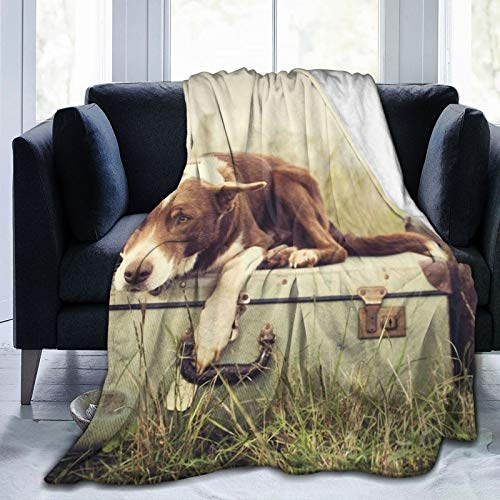 Perfect household goods Fleece Blanket 50' x 60'- Dog Luggage Suitcases Grass Home Flannel Fleece Soft Warm Plush Throw Blanket for Bed/Couch/Sofa/Office/Camping