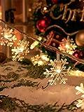 Fontien 6M 40 LEDs Schneeflocken Lichterkette Batteriebetrieben Innen Weihnachten Winter Party Deko, Warmweiß