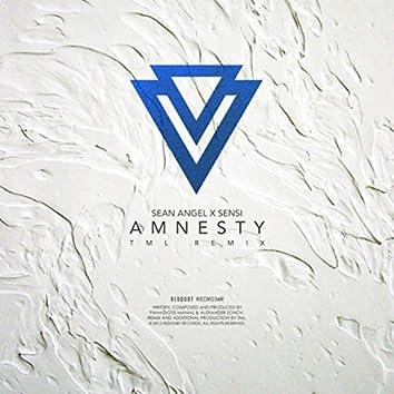 Amnesty (TML Remix)