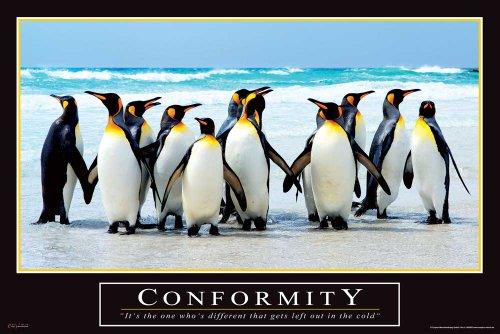 Motivational Conformity Tiere Pinguine Poster - Grösse cm
