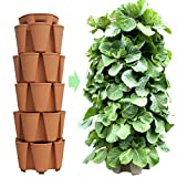 Greenstalk Patented Large 5 Tier Vertical Garden Planter with Patented Internal Watering System Great for Growing a Variety of Strawberries, Vegetables, Herbs, Flowers (Classic Terracotta)
