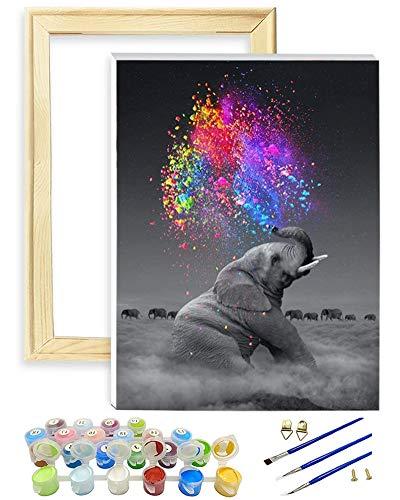 Malen nach Zahlen für Kinder Erwachsene Mit Rahmen, DIY Malen nach Zahlen Kits auf Leinwand Leinen Leinwand Acrylpigment Elefant 30 × 40 cm