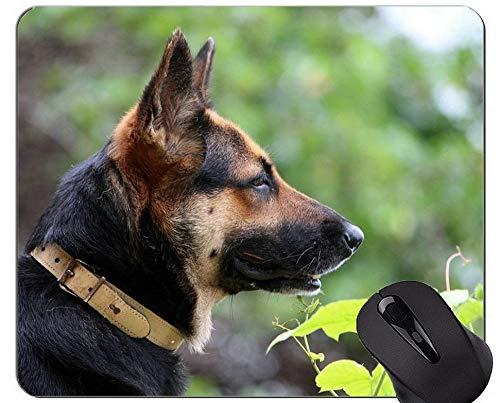 Gaming Mouse Pad Porträt eines australischen Schäferhundes, Hund Mauspads