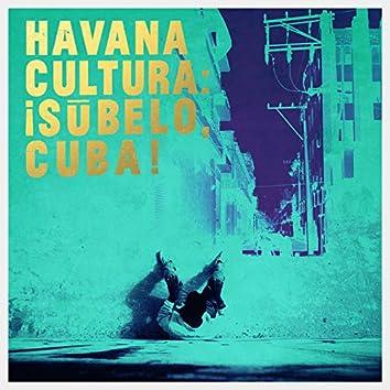 Traketeo (feat. Luz De Cuba)