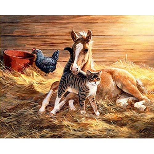 N / A 5D DIY Diamond Painting Horse Shed and Cat Kit Crystal Embroidery Picture Cross Stitch Crafts 40x50cmNo frame