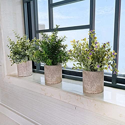 New rui cheng Plantas