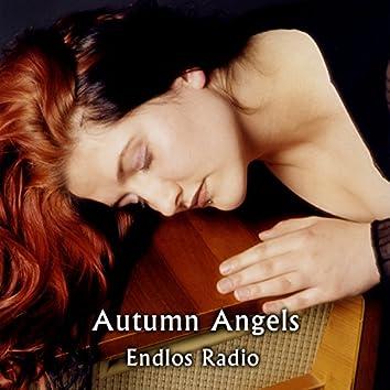 Endlos Radio
