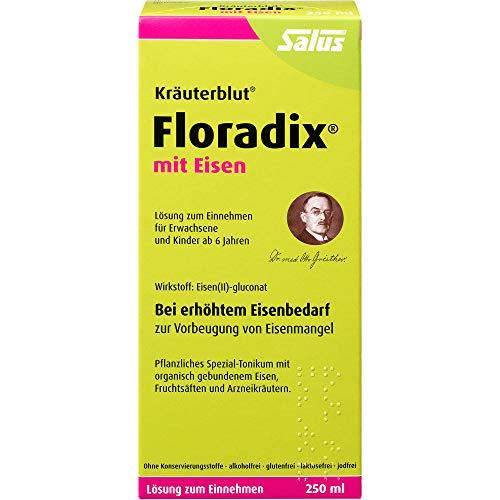 Floradix mit Eisen Lösung, 250 ml Oplossing