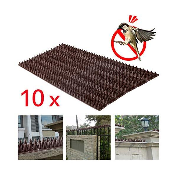 Forever Speed 50 cm Pinchos Anti Pajaros y Anti Gatos y Anti Aves Polipropileno Paneles con Pinchos contra Aves Marrón