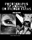 Photographs of animals on french farms: Black and white   farm animals art photographs   Funny and touching portraits of beloved farm animals   as if you were at a french photo exhibition.