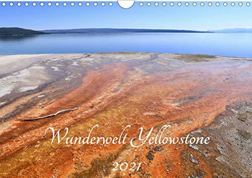 Wunderwelt Yellowstone 2021 (Wandkalender 2021 DIN A4 quer)
