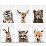 Baby-Tier-Poster und Drucke Hase, Reh, Fuchs, Leinwandbild,