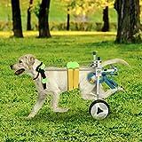 Kacsoo Silla de Ruedas para Perros,Dos Ruedas Ajustables para Mascotas Silla de Ruedas Ligera Fácil Ensamble Carrito para Perros Patas traseras Rehabilitación para Perros pequeños Perrito Gato