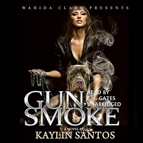 Gun Smoke audiobook cover art