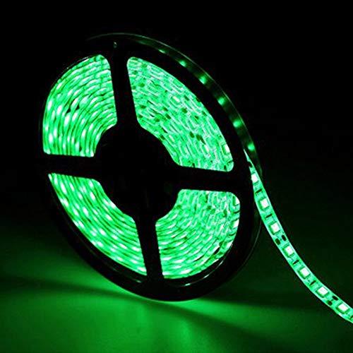 Tiras LED 12V Verde,5 metros SMD5050 IP65 Impermeable Tiras LED para Habitación, TV, Home, Bar