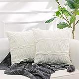 NordECO HOME Luxury Samt Soft Solid Kissenbezüge, Flauschig Fell Kissenhülle für Schlazimmer Sofa Dekoration, 45x45cm, Weiß, 2er Pack, ohne Kisseneinlage