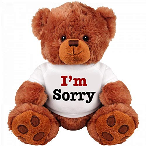 I Am Sorry Teddy Bear - Cute and Cuddly : Funny Teddy Bear Couple Gift : Romantic Medium Teddy Bear Stuffed Animal