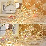 LEDGLE 10er Stück LED Lichterkette Batterie Kupfer Drahtlichterkette Warmweiß 1.2M&24LEDs Lichterketten Weihnachten Batteriebetrieben wasserdichte Lichter Flasche Dekoration - 5