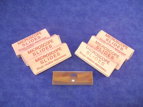 Single Depression Microscope Slides, 6 Packs of 12
