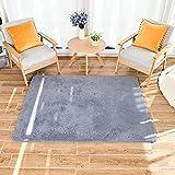 HEXIN alfombras pie de Cama,Alfombras de Moderna para Salon de Estar de Pila Gruesa No se desprenden y Alfombra de...